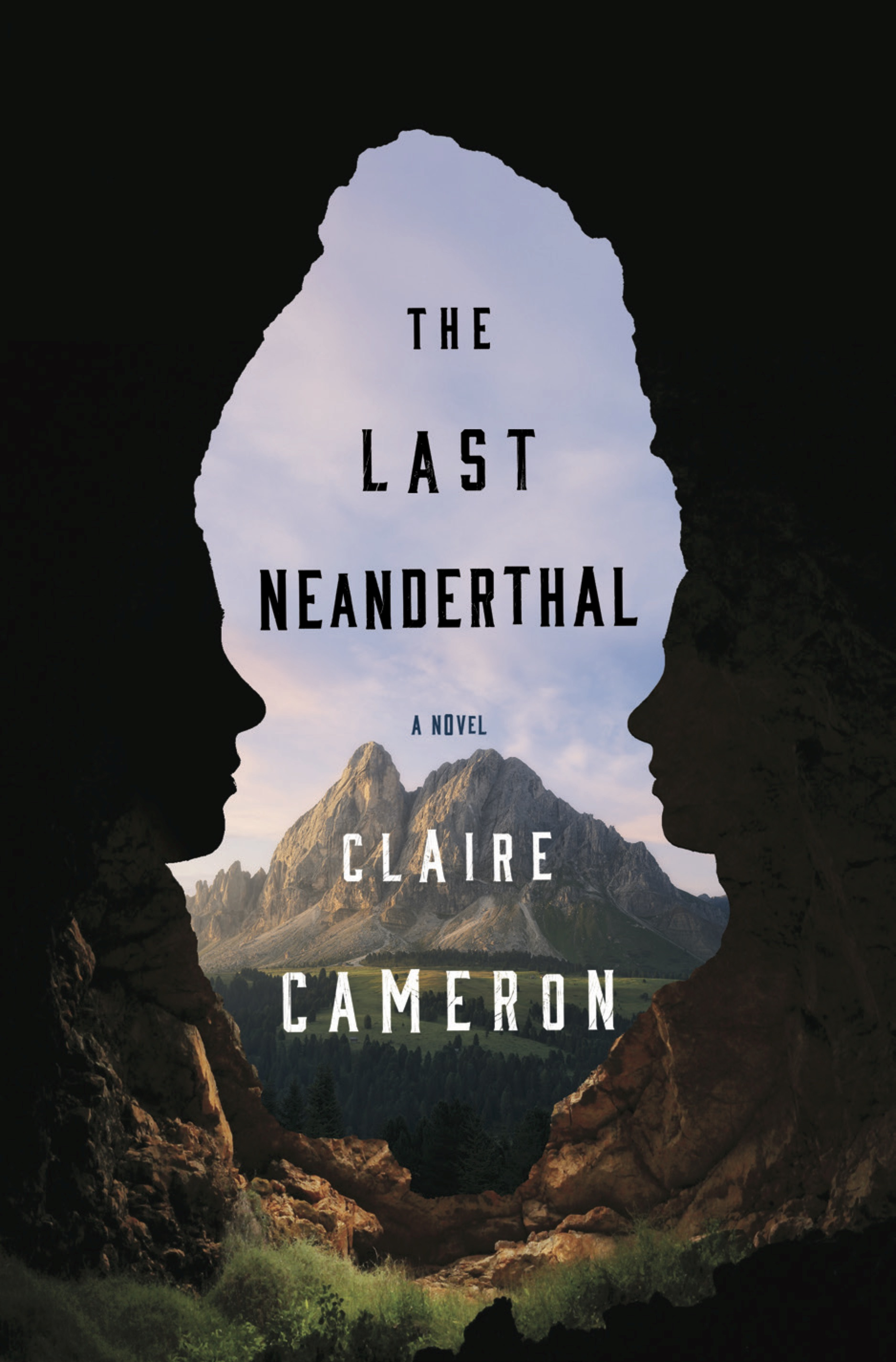 The Last Neanderthal cover